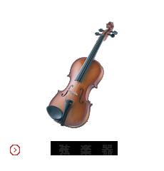 弦楽器イメージ